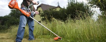 Taglio vegetazione campi incolti entro il 15 Giugno